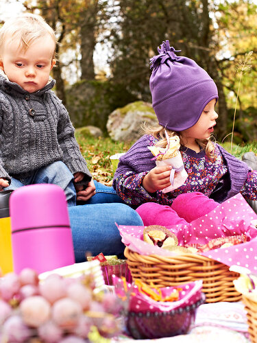 Picnic for Autumn Days