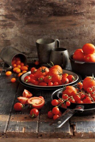 Tomato Magic