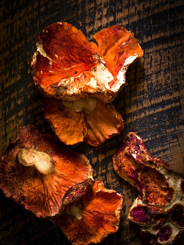 Fresh lobster mushrooms on rustic wood surface