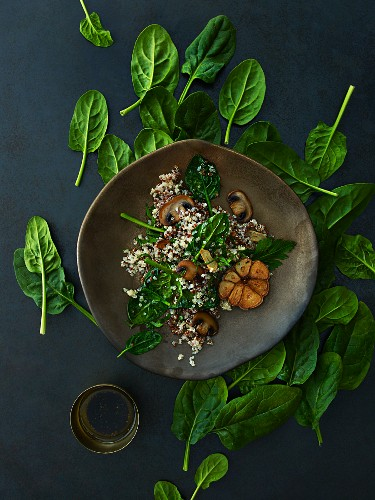 Quinoasalat mit Spinat, Pilzen und Vinaigrette