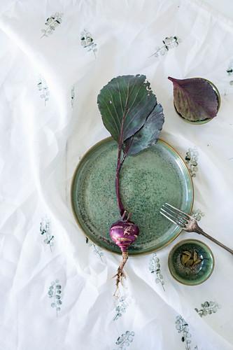 Bowls, plate and purple kohlrabi on printed cloth