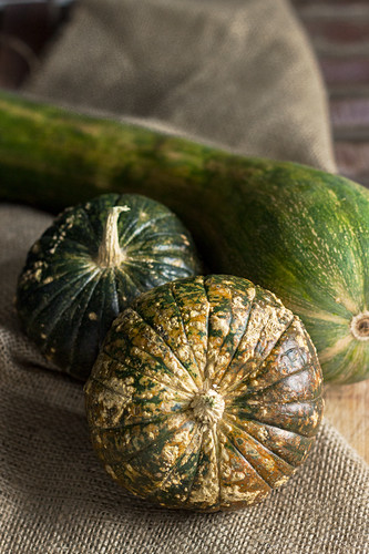 Various green pumpkins