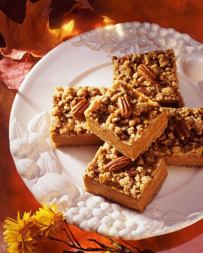 Walnut and pecan squares