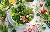 Bunter Salatteller mit Frühlingskräutern