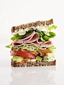 Sliced sausage and salad sandwich