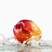 Nectarine with splashing water