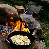 Cooking Trout on the Campfire