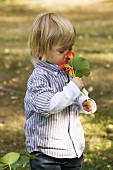 Boy smelling at nasturtiums