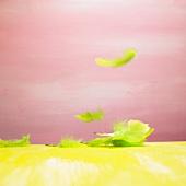 Mehrere grüne Federn