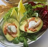 Avocado mit Shrimps auf Salatteller