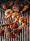 Grilled, Skewered Shrimp Over a Grill with Chicken