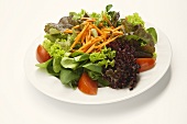 Ein gemischter Salatteller