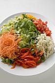 Salatteller mit Blattsalat und verschiedenem Gemüse