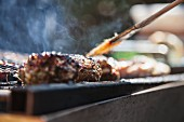 A meat kebab on the barbecue