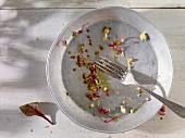 Leergegessener Salatteller