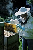 A beekeeper with a honeycomb