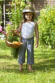 A little girl in a garden holding a basket of carrots