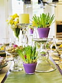 A table laid with Easter decorations