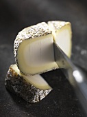 Cabri de Sologne (goat's cheese from France)