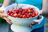 A woman holding a colander of cherries