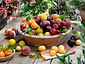 Peaches, nectarines, plums and apricots in terracotta bowl