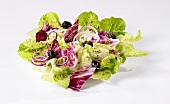 Mediterraner Salatteller