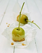 Apples on stalks with a white chocolate glaze and nuts