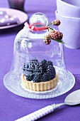 Blackberry tartlet under a cloche