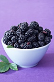 Blackberries in white bowl