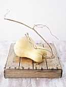 Butternut squash on wooden box