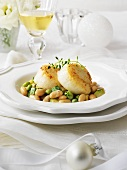 Succotash (beans and corn) with scallops