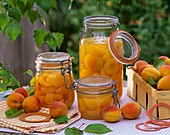 Apricot compote and fresh apricots