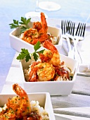 Scampi with tomato and cognac sauce on rice