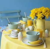 Boiled eggs, orange juice and narcissi on breakfast table
