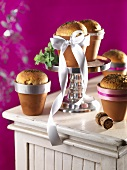 Olive rolls with oregano in flower pots