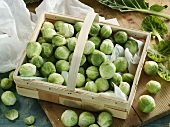 Fresh brussels sprouts in a basket