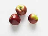 Three apples (variety: Spartan)