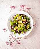 Mixed salad leaves with potatoes and capers