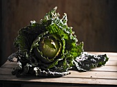 A home-grown cabbage