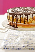 Biscuit cake with apple-peach jelly, cream and chocolate