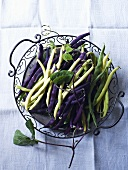 Green, yellow and purple bush beans in a wire basket