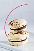 White chocolate macaroons with cocoa powder