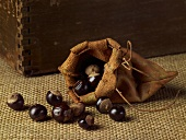Guarana seeds in a leather pouch