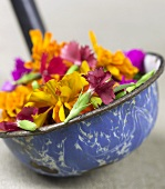 Ladle Full of Colorful Edible Flowers