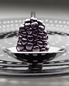 Blackberry on Small Metal Dish
