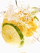 Citrus Splash; Club Soda, Oranges, Lemon and Lime