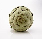 A green artichoke