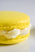 Macaroon with vanilla cream (close up)