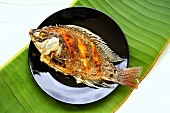 Fried tilapia (Thailand)