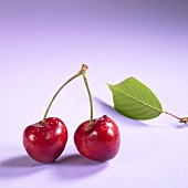 Pair of cherries with drops of water